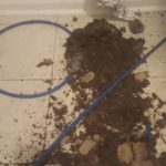 Dirt from dryer vent duct routed underground - closeup.